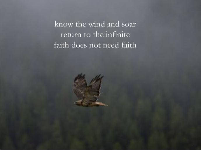 hawk poem2 1.30.19 copy